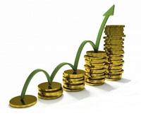 Проверка финансовой устойчивости Застройщика